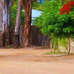 miriam mannak, freelance journalist south africa, freelance photographer south africa, Mozambique pictures, post cyclone Mozambique, cyclone Mozambique pictures, pemba Mozambique, journalist cape town, sustainable development journalist, africa journalist, africa photojournalist, Post-cyclone recovery Mozambique photos